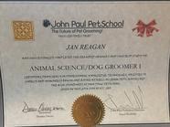john paul school cert