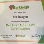 Pet First Aid Certificate JGP