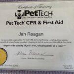 CPR 2019-min